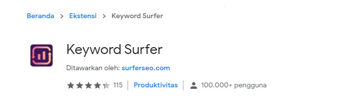 Extension Chrome Keyword Surfer